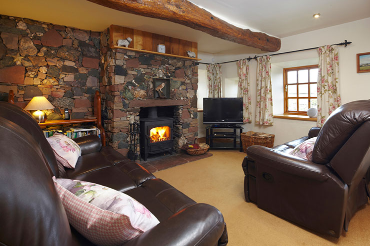 Cosy Living Room with Wood Burning Stove